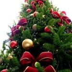 tall-tree-decorated-image