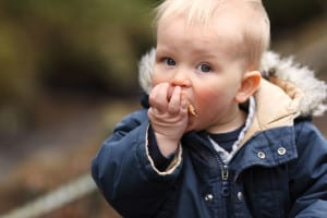 baby-eating-bread-image