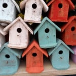 bird-houses-colorful-image