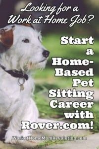 Home-Based Dog Sitting Jobs with Rover.com