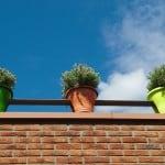 three-pots-image