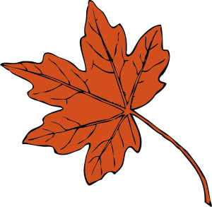 maple-leaf-graphic-image