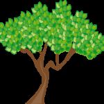 zen-tree-image