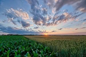 beautiful-sunset-image