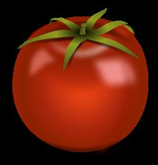 shiny-red-tomato-image
