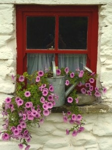 lovely-floral-window-image