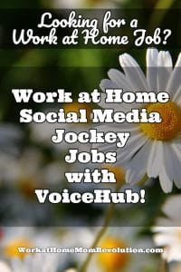 voice hub work at home jobs