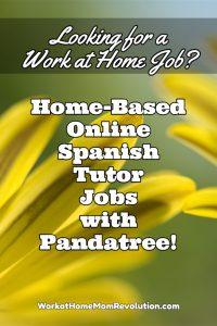 pandatree jobs