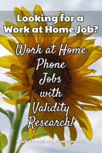 Work at Home Phone Jobs with Validity Research