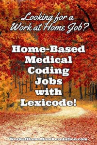 Home-Based Ambulance Medical Coding Jobs with Lexicode
