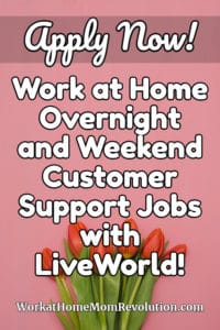 work at home overnight and weekend customer support jobs with LiveWorld