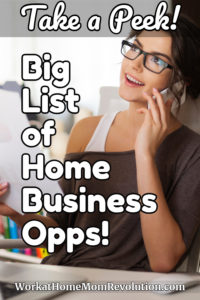 Home Business Opportunities pin