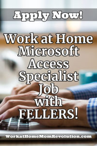 work at home microsoft access specialist job with FELLERS