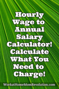 Hourly Wage to Annual Salary Calculator