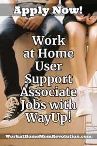 work at home user support jobs with WayUp