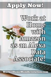 work at home Amazon Alexa Data Associate Job