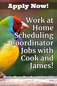Home-Based scheduling coordinator jobs.